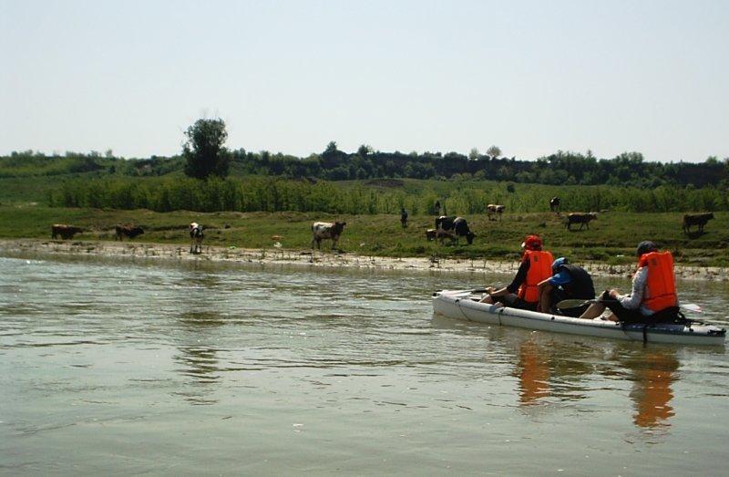 kayaking for couples on neajlov